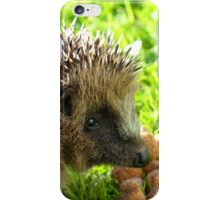 Thank You... You Saved My Life... - Hedgehog - NZ iPhone Case/Skin