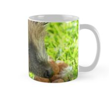 Thank You... You Saved My Life... - Hedgehog - NZ Mug
