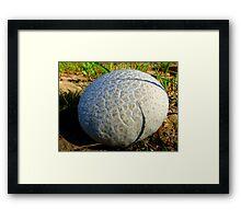 """""""Soft-Ball""""......... Framed Print"""
