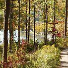 Keuka Lake in Fall by Cheri Perry