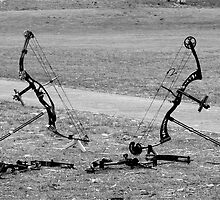 Two Compound Bows standing over their 'kills' by Sandra Chung