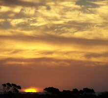 Just Another Magic Sunset... March 2008 by Craig Watson