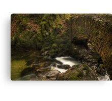 Aira Force Canvas Print