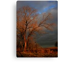 After The Fire - Still Standing Canvas Print