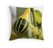 French Squash Throw Pillow
