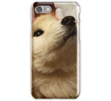 Have I Been A Good Doggie? iPhone Case/Skin
