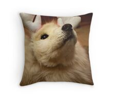 Have I Been A Good Doggie? Throw Pillow