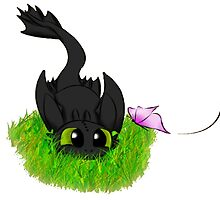 Baby Toothless by Kara  Davison