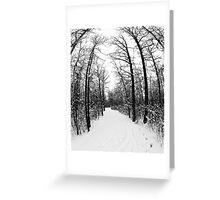 Winter Footpath Greeting Card