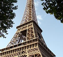Eiffel Tower, Paris by taralynn101