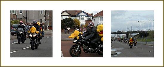 Pooh Bear Rides Again by Harri