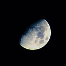 Moon's Blue  by Daniela Weil