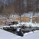Jackie's winter wonderland by nancy dixon
