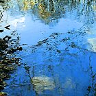 River Blue by Chad  Bracken