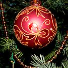 Ornament   ^ by ctheworld