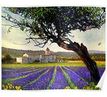lavender fields and chalet at sunset Poster