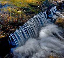 Wentworth Falls - Blue Mtns  - OZ by Warren. A. Williams