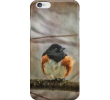 Winter Visitor iPhone Case/Skin