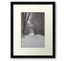 Rural Road in Snow Storm Framed Print