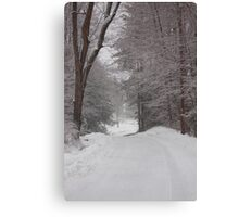 Rural Road in Snow Storm Canvas Print