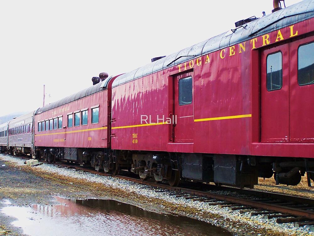 Tioga Pennsylvania Excursion Train by RLHall