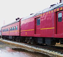 Tioga Pennsylvania Excursion Train by RLHall