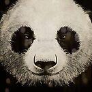 panda eyes by vinpez