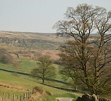 Welcome to Farndale by dougie1