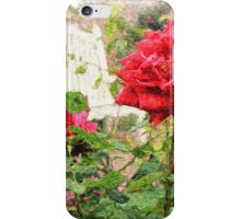 Beautiful Red English Roses with White Bench iPhone Case/Skin