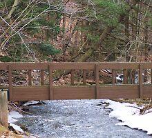 Woodland Trail Bridge by RLHall