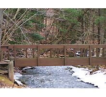 Woodland Trail Bridge Photographic Print