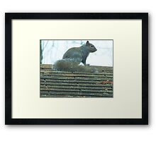 I've got Friends in High Places Framed Print