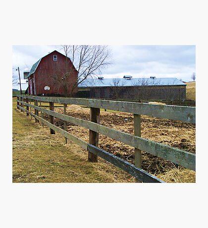 Horse Farm Photographic Print