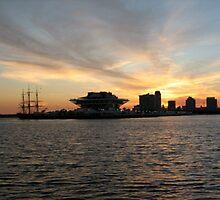 St Petersburg Pier by Susan Girtman