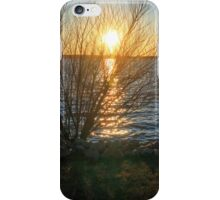 Sunset Through the Trees iPhone Case/Skin