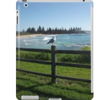 Silver Gull iPad Case/Skin