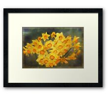 A Host of Golden Daffodils Framed Print