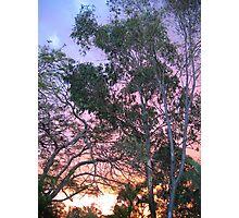 Rainbow Sunset Photographic Print