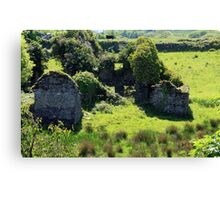 Birth Place Of The Liberator Canvas Print
