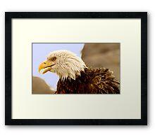 Above All Framed Print