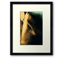 Reading nude Framed Print