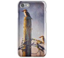 Kookaburras two iPhone Case/Skin