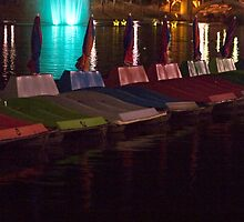 Paddle Boats on the Torrens by Karen Gough