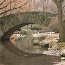 NYC central park by thedude23
