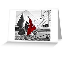 Flag of Turkey - Selective Coloring  Greeting Card