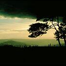 Wind by Larry149