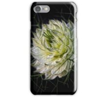 love-in-a-mist iPhone Case/Skin