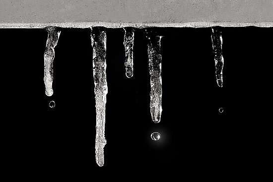 Icicles by Holly Cawfield