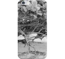 Seagrape iPhone Case/Skin