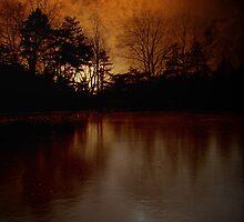 Frozen Sunset by Sonja Svete